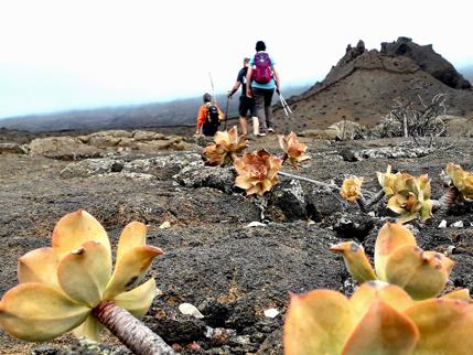 ruta-de-los-volcanes-rutas-tematicas